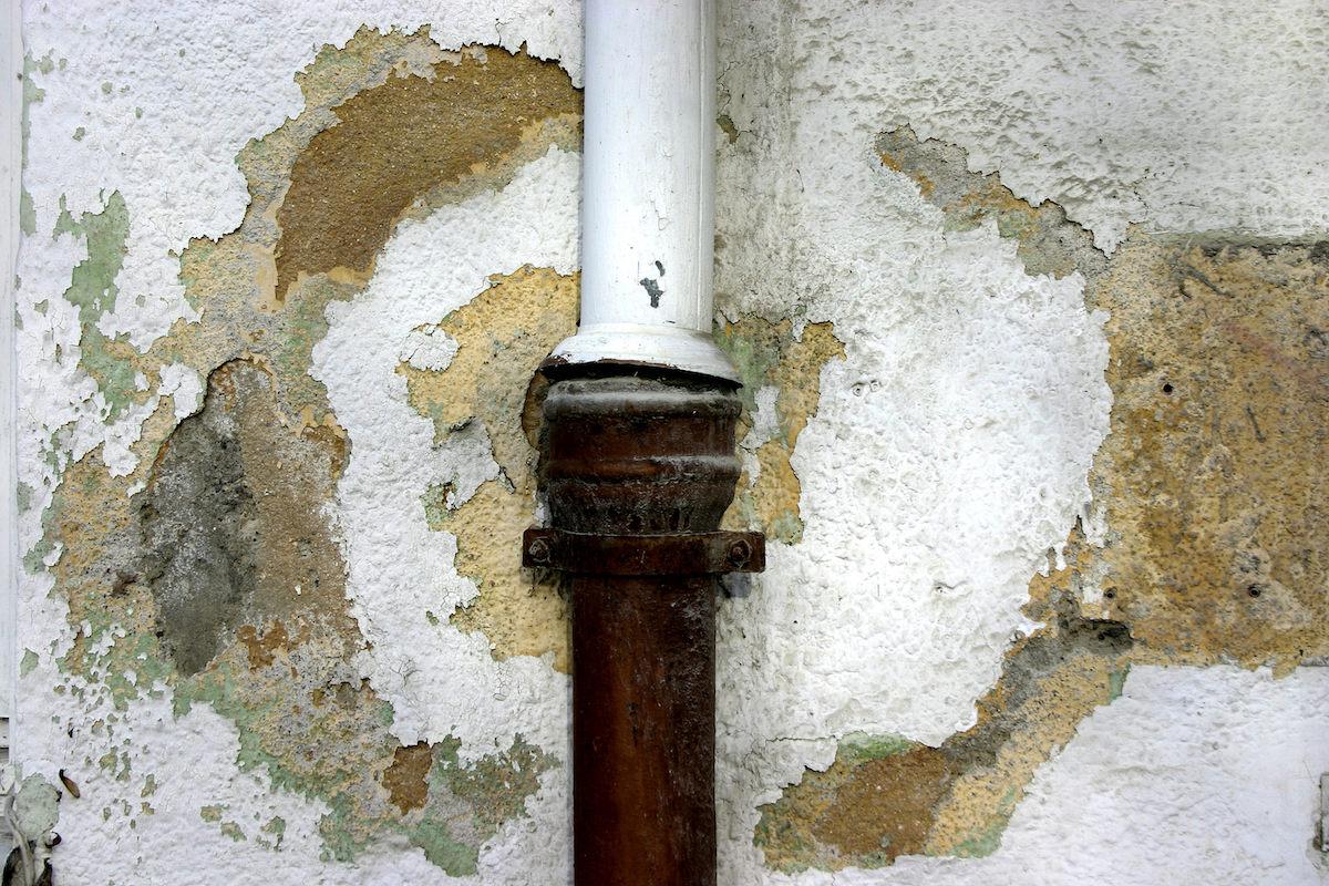 San Diego Mold damage restoration